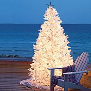 Island Christmas.Don T Miss A Christmas Event Oak Island Nc Vacation